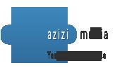 Azizi Motors, Car Dealer Website Solutions